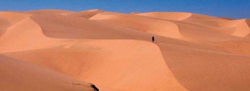 40 days desert